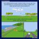 IM8_aviationdurable